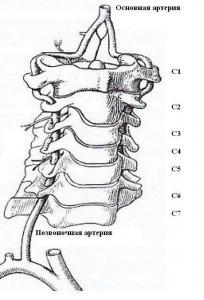 Диагностика вестибулярных нарушений  на фоне изменений  в вертебрально-базилярной системе