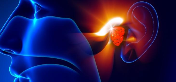 12 февраля 2020 года – обучающего курс «Отосклероз. Диагностика и хирургическое лечение»
